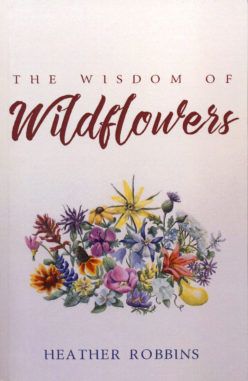 The Wisdom of Wildflowers